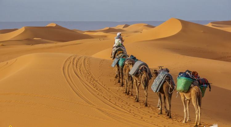 Wyprawa Rozwojowa Sahara - zdjęcie nr 10