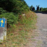 El camino es la meta, czyli wędrówka do Santiago de Compostela