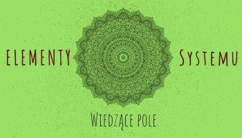 Elementy systemu Wiedzące pole