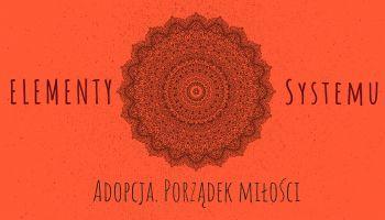 Elementy systemu. Adopcja porządek miłości