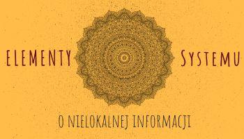 Elementy Systemu. O nielokalnej informacji