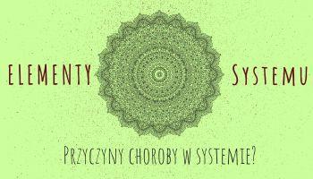 Elementy systemu Przyczyny choroby w systemie?