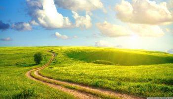 Jak odzyskać naturalną odporność. Prowadzi dr Leszek Krześniak