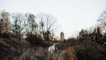 Podążaj za Białym Koniem