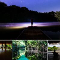 Medytacja w dżungli