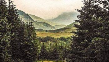 Płynąca z lasami: BEZDROŻA NASZEGO GŁOSU/Zdjęcie: IG Hidden Scotland
