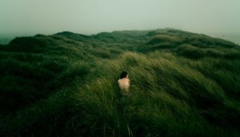 Płynąca z lasami: Z DZIKOŚCI POWSTAŁAŚ I W DZIKOŚĆ SIĘ OBRÓCISZ/Zdjęcie:  David Uzochukwu