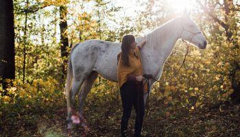 Uważność w kontakcie z końmi