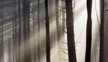 Ziemia - mój jedyny dom: Powietrze, czyli mój oddech