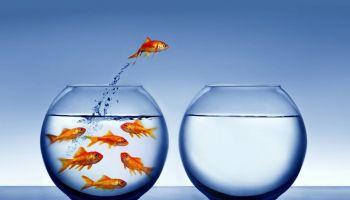 On i Ona Dobrze Ustawieni: Na sukces trzeba umieć sobie pozwolić
