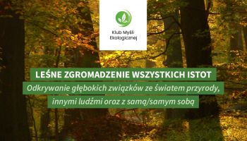 Leśne Zgromadzenie Wszystkich Istot